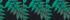 Vert Tropic Luxuriant Rayé